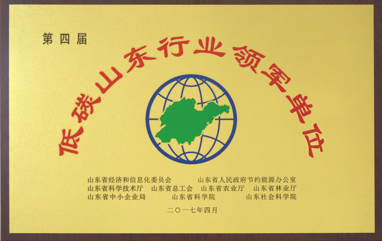 Low-carbon industry leader in Shandong